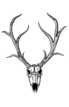 """""""Diplomatic Deer Skull"""" Deer Skull Black and White Patterned Digital Art by iiixtheory, $20.00"""