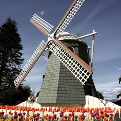 Roozengaarde Display Garden (Mount Vernon, WA): Address, Phone Number, Top-Rated Attraction Reviews - TripAdvisor