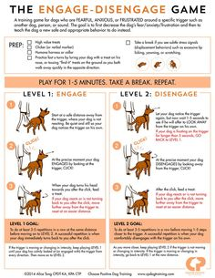 "Many #dogs cannot stay calm when they see another dog/person/somethg in their environment. They *react* instead of observe. These reactions are grouped into 4 behavior categories: -> Fight (barking, lunging) -> Flight (avoiding, hiding) -> Freeze (cowering, shutting down) -> Fool Around (jumping, mouthing) Positive reinforcement methods (ex. the ""Engage-Disengage Game"") help dogs to become less anxious/fearful:http://www.clickertraining.com/reducing-leash-reactivity-the-engage-disengage-game"