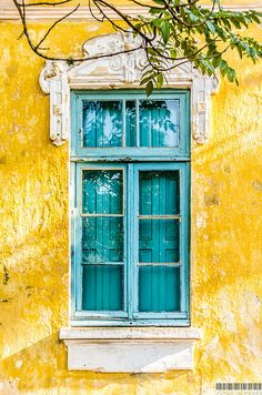 Shutters painted to match the exterior window frames. Porto Alegre, Rio Grande do Sul, Brazil - Amazing Interior Design Rio Grande Do Sul, Photo Trop Belle, Window Frames, Mellow Yellow, Colour Yellow, Colour Colour, Colour Board, Windows And Doors, Aesthetic Wallpapers