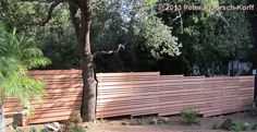 horizontal slatted screen fencing surrounding tree - Google Search