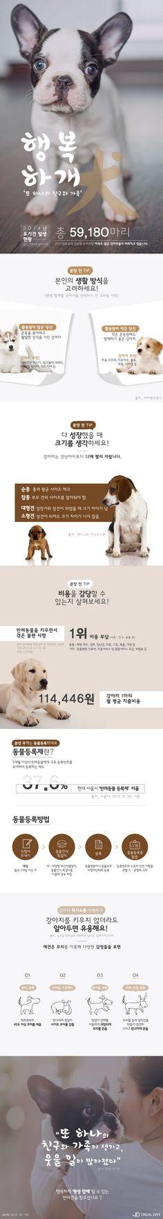 평생 함께할 반려견 찾으셨나요? [인포그래픽] #pet_dog / #Infographic ⓒ 비주얼다이브 무단 복사·전재·재배포 금지
