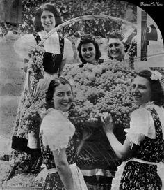 Italian Vintage Photographs ~ #Italy #Italian #vintage ~ Milano 1940: Festa dell'Uva (Grape Festival)