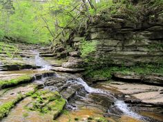 Mother Nature is waking up and everything is in bloom, which is the perfect time for short hikes in Kentucky. Here are 12 of the best places to take one.