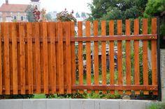 novy-dreveny-plot.jpg (1200×800)