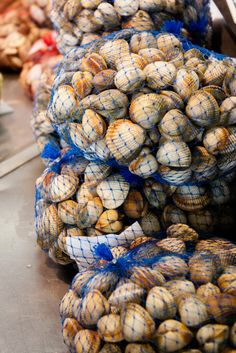 Fresh Ameijoas (Clams), taste them with me on An American In Portugal Tours! Photo by Rochelle Ramos