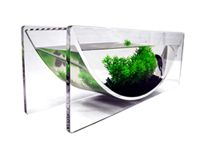 The ZeroEdge Betta Bowl is designed to house betta fish and also be used as a planter. Great for desktops, kitchen table/counter centerpiece and incorporating aquatic plants of all types. Available in different colors at www.zeroedgeaquarium.com