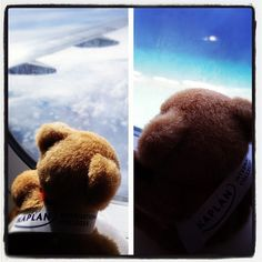 The #KaplanBear was pretty busy during the weekend. Here he's landing on the #Maldives to meet with a few students. #studyintheuk by KIC Pathways - University Preparation Courses, via Flickr