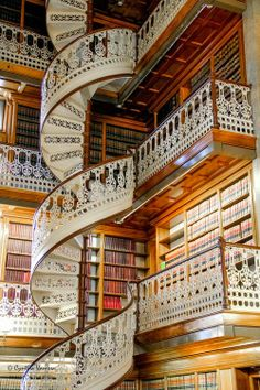 library in florence italy