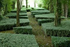 Louis Benech Design Topiary hedging under tree canopy