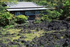 Mishima brings together what many tourists enjoy about Japan — ancient temples, domesticated deer and views of Mount Fuji.