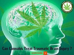 Studies have shown #Cannabis helps limit brain damage and improves recovery when…