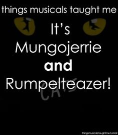 "Things Musicals Taught Me: ""It's Mungojerrie and Rumpelteazer!"" ~Cats    I had a Mungojerrie to my Rumpelteazer once :'("