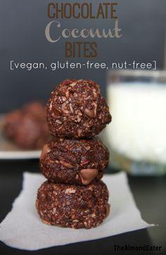 Chocolate Coconut Bites   The Almond Eater #vegan #glutenfree