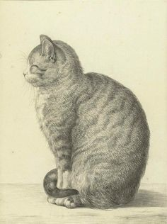 Bonjour `◊´ Zittende kat, Jean Bernard, 1815. @rijksmuseum #MewseumMonday pic.twitter.com/JDlqO0iaVZ