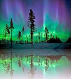 The Northern Lights in Alaska. Even though the northern lights are not always present they would be a one in a million thing to see. Also, I would just love to be able to go to Alaska and see all the animals and wildlife here. Beautiful Sky, Beautiful World, Beautiful Places, Beautiful Pictures, All Nature, Amazing Nature, It's Amazing, Awesome, Alaska Northern Lights