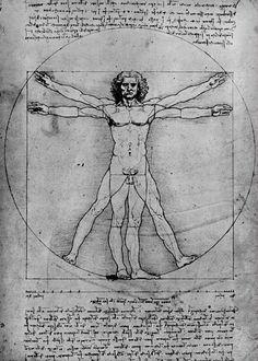 Parte del legado y conocimiento de Leonardo Da Vinci recae en sus estudios anatómicos, los cuales destacan la precisión y complejidad de sus dibujos. Este interés nació como una recomendación de su maestro Verrocchio, con quien Leonardo se formó como pintor y escultor. Éste incentivaba a sus alumnos a estudiar la anatomía humana con el fin de lograr mayor precisión en las dimensiones y proporciones de sus trazos y así perfeccionar sus pinturas.