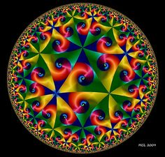 Life Signs ~ A Poincaré Hyperbolic Disk Variant
