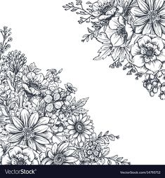 Floral backgrounds with hand drawn flowers and plants. Monochrome vector illustration in sketch style. Flower Line Drawings, Flower Drawing Tutorials, Simple Line Drawings, Amazing Drawings, Butterfly With Flowers Tattoo, Hand Drawn Flowers, Floral Illustrations, Illustration Art, Logos Retro