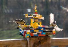 Kids bird watching Lego bird feeder