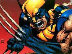 Google Image Result for http://images2.fanpop.com/images/photos/3500000/Wolverine-Wallpaper-wolverine-3508352-800-600.jpg