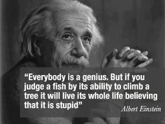 everybody is a genius . but if you judge a fish by its ability to climb a tree will live its whole life believing that it is stupid -alberts einstein-
