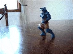 Discover & share this Fighting GIF with everyone you know. GIPHY is how you search, share, discover, and create GIFs. Funny Animal Pictures, Funny Photos, Funny Images, Funny Animals, Cute Animals, Wtf Funny, Funny Cute, Funny Shit, Hilarious