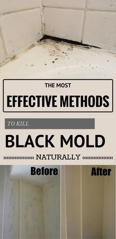 The Most Effective Methods To Kill Black Mold Naturally Ncleaningtips