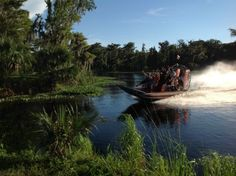 Fast Airboat in Florida Airboat Rides, Florida
