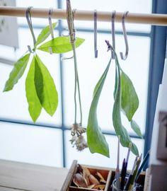 IKEA GRUNDTAL S-Haken aus Edelstahl hängen hier von einer Stange vor dem Fenster. Wir haben Blätter und Blüten daran befestigt.