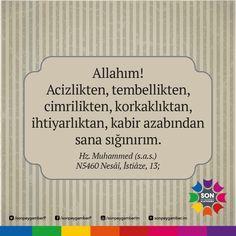 Allah, Deen, Words, Horse