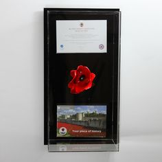 Tower of London Poppy Display Case Model O
