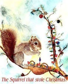 Christmas Squirrel, Save The Planet, Chipmunks, Favorite Holiday, Little Babies, Baby Boy, Creatures, Xmas, Squirrels