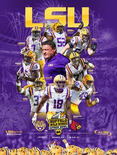 Citrus Bowl LSU 29 vs. Louisville 9 We had such a great time at this game & loved seeing Cole Swindell perform in the halftime show!!