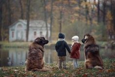 Andy Seliverstoff Andy Seliverstoffphotography Pinterest - Tiny children and their huge dogs photographed in adorable portraits by andy seliverstoff