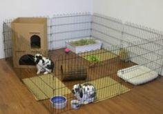 Løbegård til indenfor - giver kaninen bedre mulighed for at bevæge sig end i et bur.