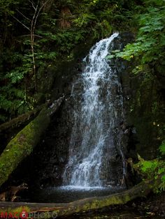 A lovely little waterfall in the Tillamook State Forest. It's a lovely place for outdoor glamour photography.