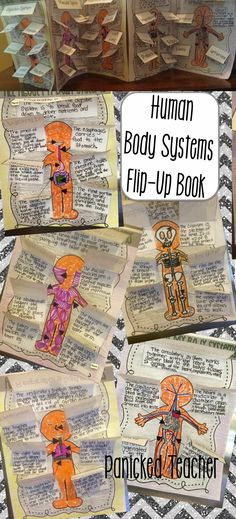 Panicked Teacher's Blog: Human Body Systems FREEBIE and NEW FLIP-UP Books!