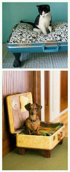 Vintage Suitcase Turned Pet Bed