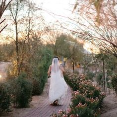 A rare moment of peace during a packed house for this bride! Thank you @vienna_glenn. . . . #windmillwinery #wedding #winerywedding #weddingphotography #photography #bride #bridal #weddingdress #arizonawedding #pheonixwedding #destinationwedding #winery #explorearizona #viennaglennphotography #AZWedding #WeddingVenue #Arizona #WindmillWinery