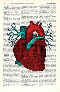 Human Heart Wall art Anatomy study print Medicine art por PRRINT