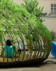 We love this living willow outdoor structure that gives you another living room in your garden ! More Living Willow Structures. Landscape Architecture, Landscape Design, Garden Design, Childrens Sand Pit, Living Willow, Willow House, Outdoor Classroom, Outdoor Play, Dream Garden