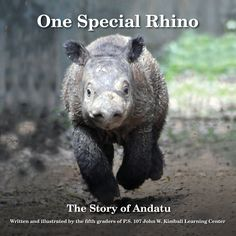 One Special Rhino: The Story of Andatu: Written and illustrated by theFifth graders at the P.S. 107 John W. Kimball Learning Center, an elementary school in Park Slope, Brooklyn, in collaboration with the International Rhino Foundation, to which all proceeds are given.  #Books #Kids #Kidswritingforkids #Rhinoceros