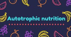 Types of nutrition - To fully understand the phenomenon of nutrition, it's important to study its types. It's classified into two main types: Autotrophic nutrition, Heterotrophic nutrition Nutrition In Plants, Self Dependent, Photosynthesis, Body Weight, Affiliate Marketing, Repeat, Thinking Of You, How To Become, Knowledge