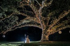 Very romantic- a lit tree would be a gorgeous addition to a ceremony or reception Moonlight Pennsylvania Wedding Under a Sparkling Tree at Aldie Mansion - MODwedding Sparkle Wedding, Mod Wedding, Fall Wedding, Wedding Under Trees, Tree Wedding, Simple Centerpieces, Whimsical Wedding, Tree Lighting, Romantic Weddings