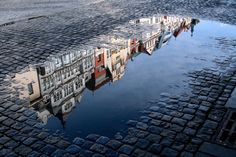 Allegra Photography: Some good water reflections I found