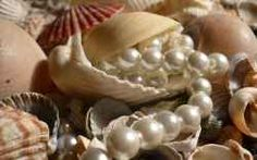 Not only do pearls look really good; they're also the product of organic processes. Many other gems are products of geological procedures that. Jewel Images, Garlic, Stuffed Mushrooms, Organic, Pearls, Vegetables, Food, Seashells, Mystic