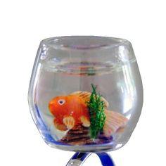 Bague@lo aquarium