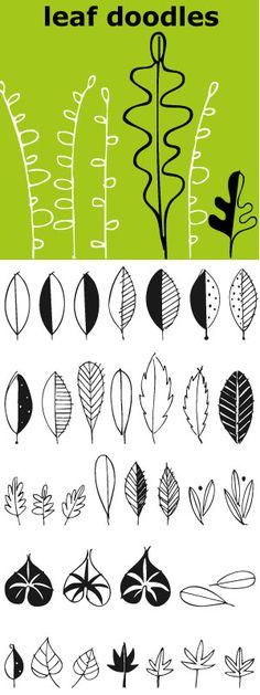 Leaves... lots of leaves... all hand drawn... 62 of them in fact. Big ones…