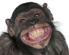 【お笑い最強説】最近いつ笑った?笑う事でもたらされる絶大な10効果